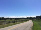 Lots of great riding through rolling hills and horse pasture.