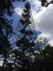 Ozarks fire tower. Great view from the top.