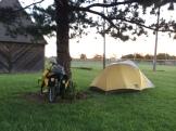 On Safari by the softball fields.