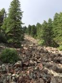 Flatiron rockslide.