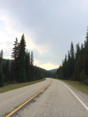 Beautiful riding along Highway 12.